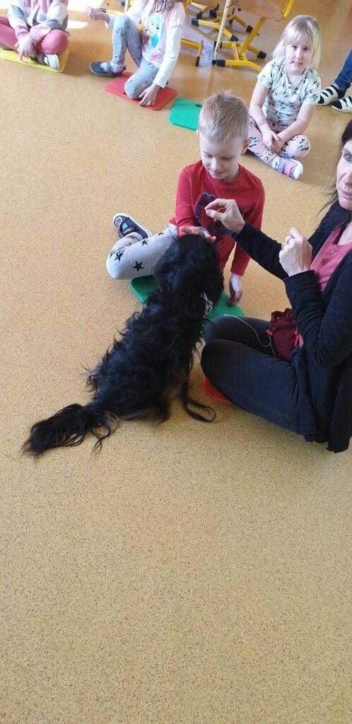 chłopczyk karmi psa w towarzystwie opiekuna psa