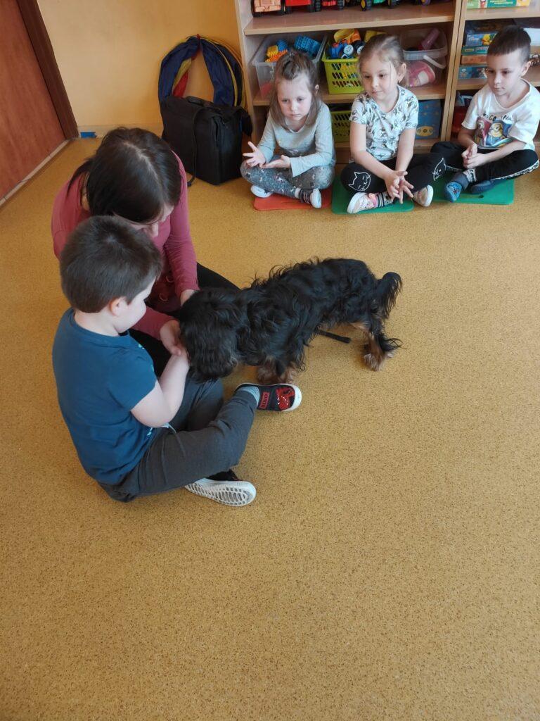 Chłopiec siedzi na podłodze i wyciąga rękę z karmą dla psa